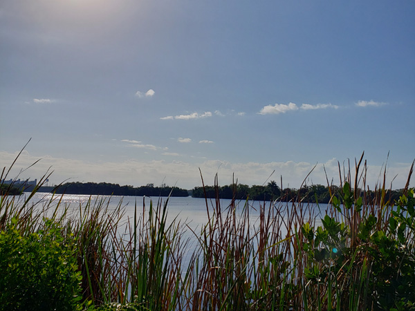 Caloosahatchee Creeks Preserve in N. Fort Myers, FL